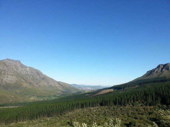 Jonkershoek Nature Reserve : Best place in the world to go for a hike or a mountain bike ride.