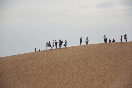 Red Sand Dunes: Красные дюны
