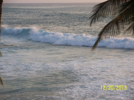 Kona Reef Resort : View of Waves