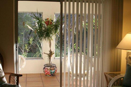 West-End Paradise: View to Hugh Poarch - Suite - D