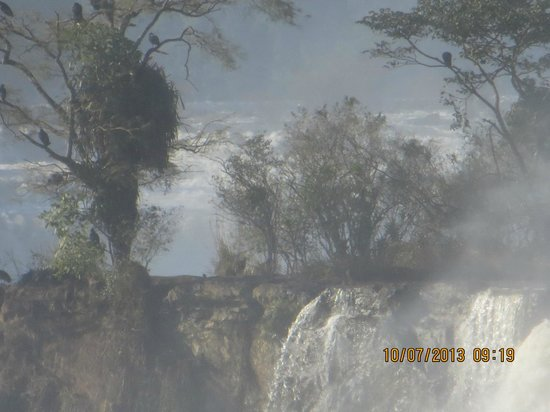 Iguazu Falls : Cataratas de Iguazú, Argentina