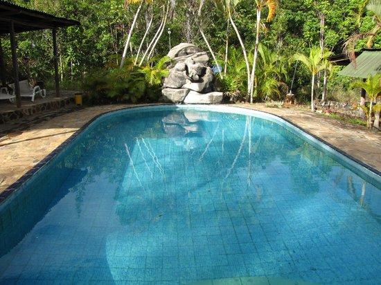 ecologicol lodge Ya-koo c.a. : la piscina