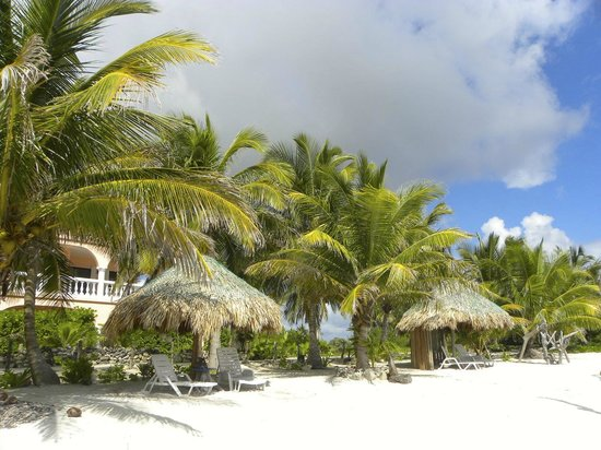 Coral Garden Inn : Paradise from the beach