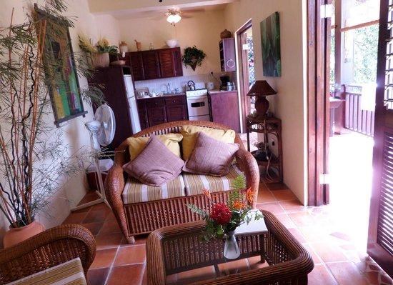 Villa Pomme d'Amour : Salon, cuisine