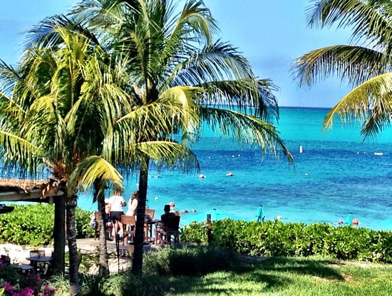 Partial Ocean View From Room Picture Of Coral Gardens On