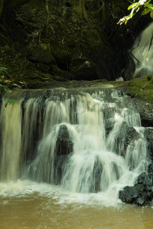 Karura Forest : A beautiful water fall