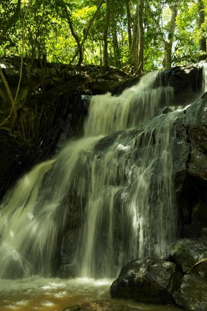Karura Forest: A beautiful water fall