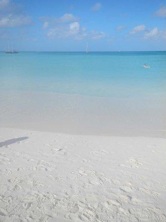 Aruba Marriott Resort & Stellaris Casino: beach is awesome