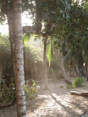 Caribe Town : Il parco del resort.