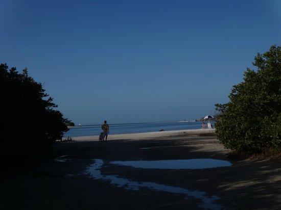 Dog Beach : Entrance to beach