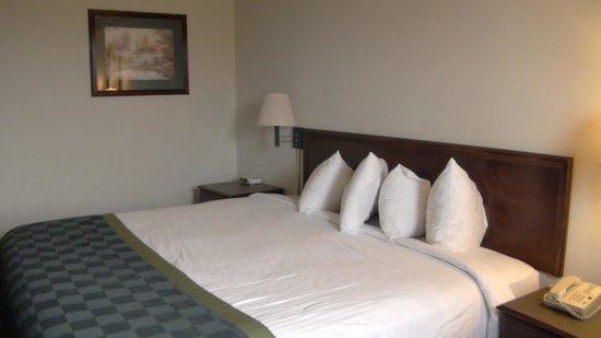 Baymont Inn & Suites Mason: Our room