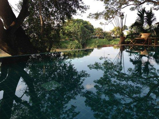 Baan Nam Ping Riverside Village: La piscine de l'hôtel