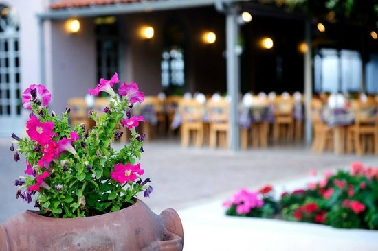 Taverna Ambrosia: Ambrosia Garden Restaurant