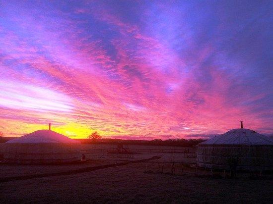 Caalm Camp: Yurts at Sunrise