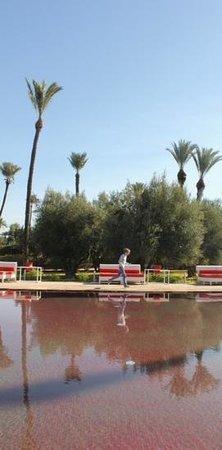 Murano Resort Marrakech: red pool
