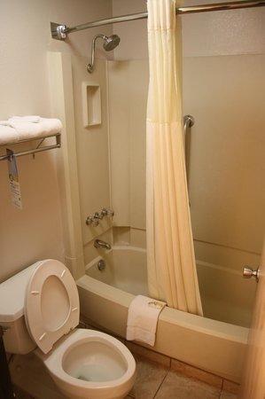 Quality Inn at Lake Powell : WC und Dusche
