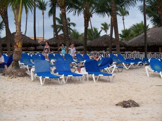 Grand Bahia Principe Punta Cana: Beautiful beach cleaned daily but water is rough.