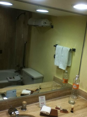 Fiesta Inn Aeropuerto Ciudad de Mexico: The bathroom was immaculate, shower had good water pressure