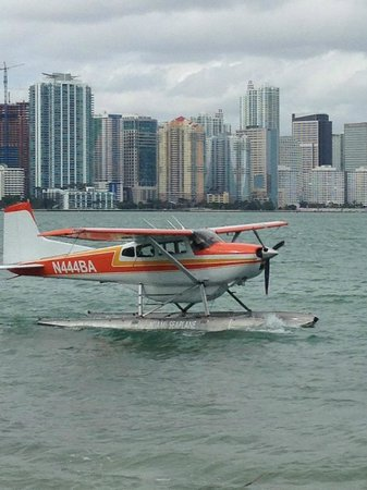 Miami Seaplane Tours : Miami skyline