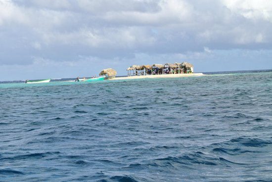 Paradise Island & The Mangroves (Cayo Arena): Island