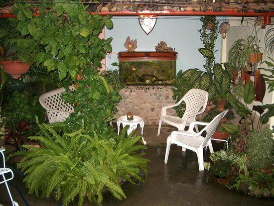 Casa Gallart : patio