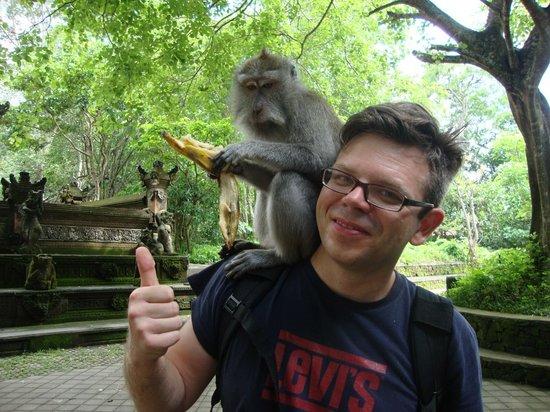 Smart Bali Tours