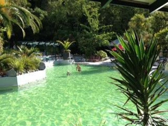 Taupo DeBretts Spa Resort: my favorite thermal pool