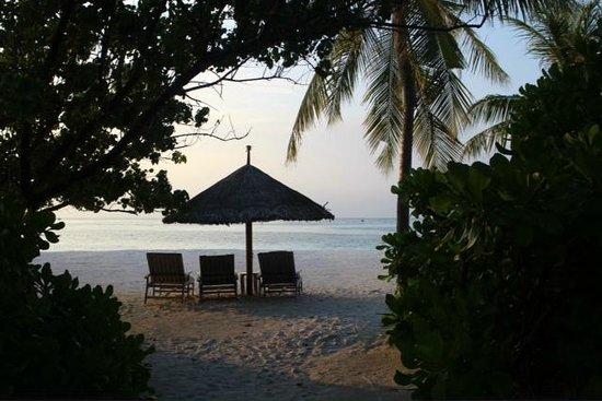 Four Seasons Resort Maldives at Kuda Huraa : plage