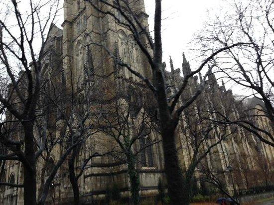 Gray Line New York Sightseeing: St John