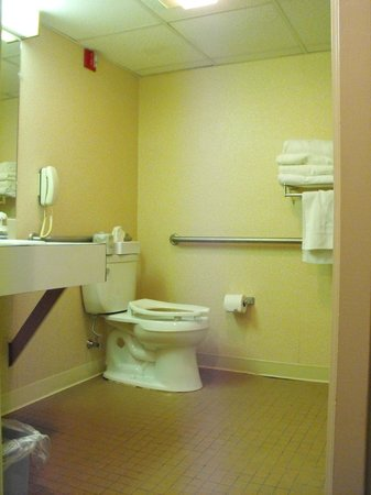 BEST WESTERN Merry Manor Inn : Room 241 - accessible bathroom