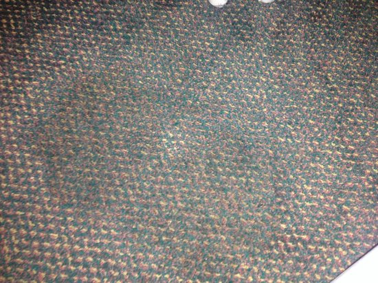 Tropical Palms Resort and Campground: Stained carpet