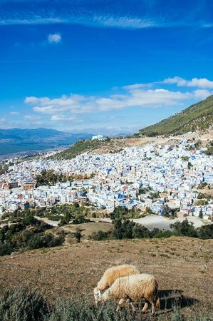 Altstadt von Chefchaouen: on the way to the Mosc