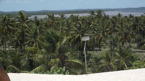 Del Mar Hotel: Passeio a Mangue Seco