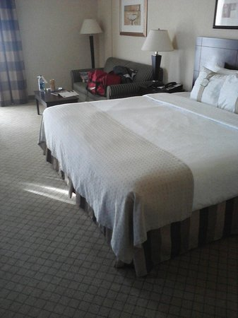 Holiday Inn Hotel & Suites Springfield - I-44: The beautiful room