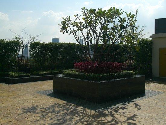 Lohas Residences Sukhumvit : rooftop garden