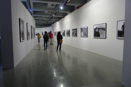 Fine Arts Museum retrospective