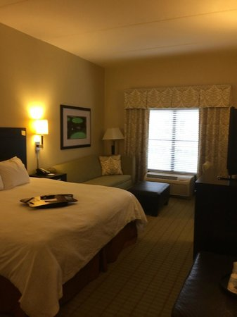 Hampton Inn & Suites Gainesville-Downtown: hotel room