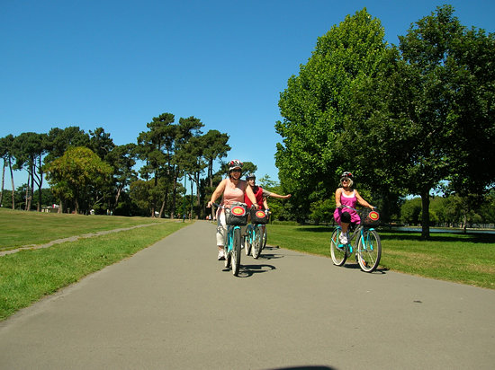 Christchurch Bike & WalkingTours: Cycling in Hagley Park