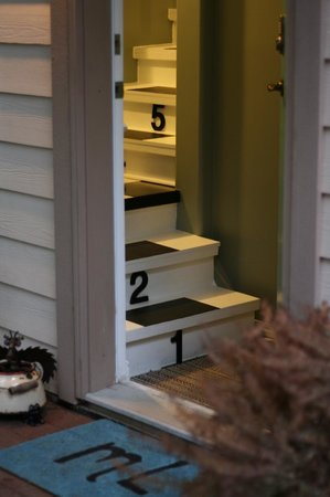 mulBerryLand Guest House: Numbered stairs leading up to your suite