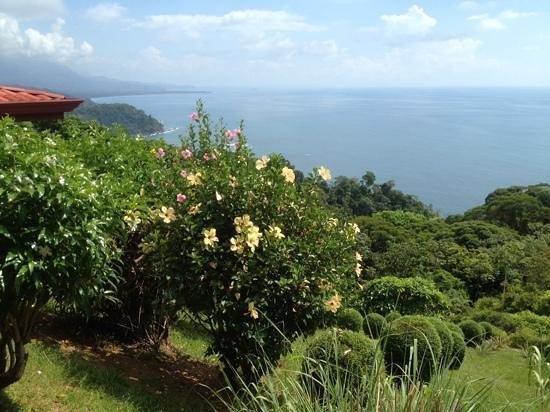 Villas Alturas : View from Room 2