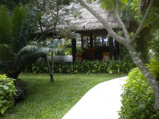 Mimosa Resort & Spa: grounds/garden