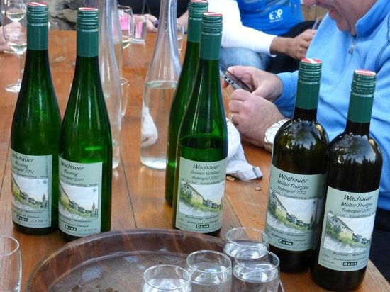 Vienna Explorer Tours & Day Trips: One of many wine tasting stops along the tour - the only Heuriger we visited - young wines