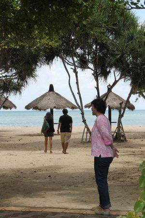 Inna Sindhu Beach: Sanur Beach