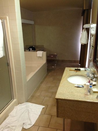 Best Western Royal Palace Inn & Suites: Huge bathroom in room 317.