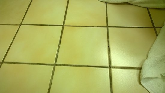 Clarion Inn: Loose tiles with large chunks of grout missing
