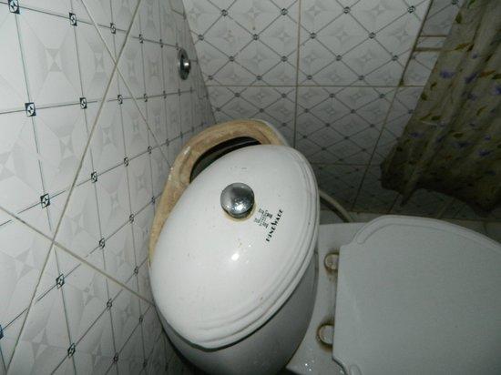 Hotel Blue Horizon: Bathroom Flush