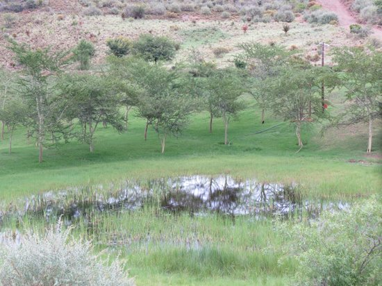 Rooiberg Lodge : Looking down from the units to the dams