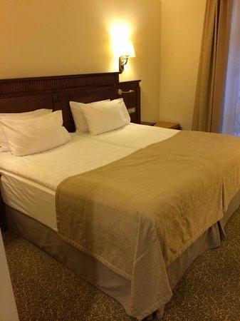 Garden Ring Hotel : room