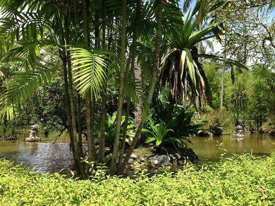 Melia Bali : территория