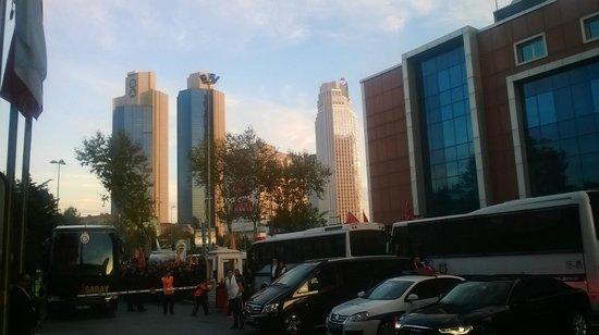 Movenpick Hotel Istanbul : местность